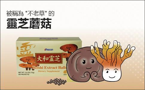 Reishi Extract Balls
